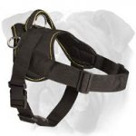 Adjustable Nylon Dog Harness for English Bulldog