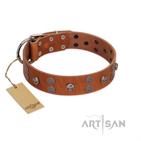 """Road Rider"" FDT Artisan Tan Leather English Bulldog Collar with Old Silver-like Skulls and Medallions"