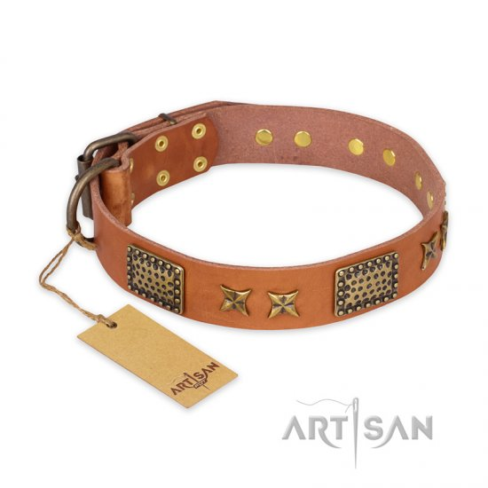 """Cosmic Traveller"" FDT Artisan Adorned Leather English Bulldog Collar with Old Bronze-Plated Stars and Plates"