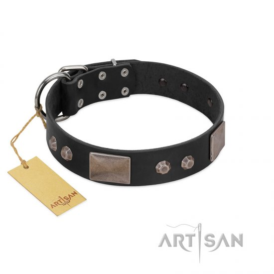 """Square Stars"" Modern FDT Artisan Black Leather English Bulldog Collar with Square Plates and Studs"