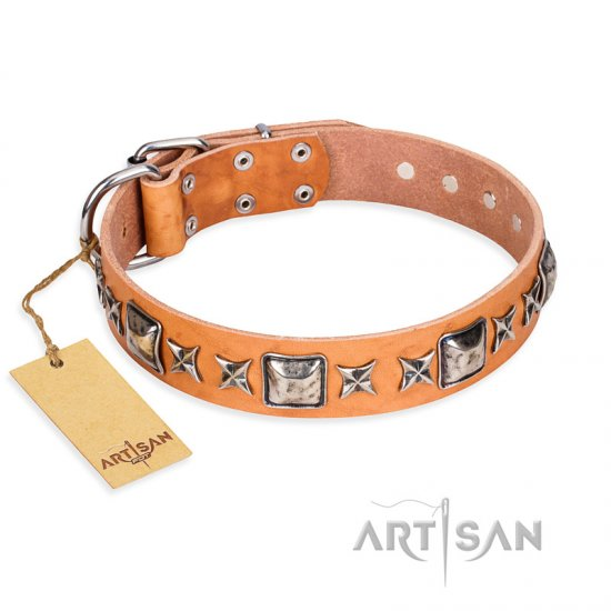 """Glamour Finery"" FDT Artisan Female English Bulldog collar of natural leather with stylish old-looking circles"