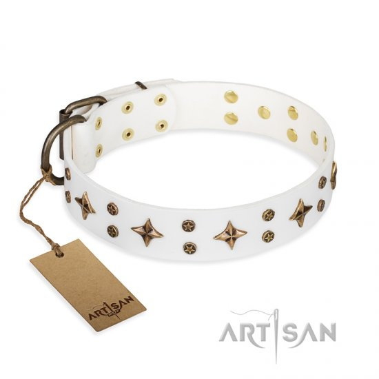 'Bright stars' FDT Artisan White Leather English Bulldog Collar with Old Bronze Look Decorations - 1 1/2 inch (40 mm) wide