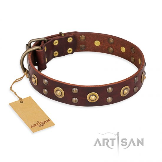 """Caprice of Fashion"" FDT Artisan Brown Leather English Bulldog Collar with Round Decorations"