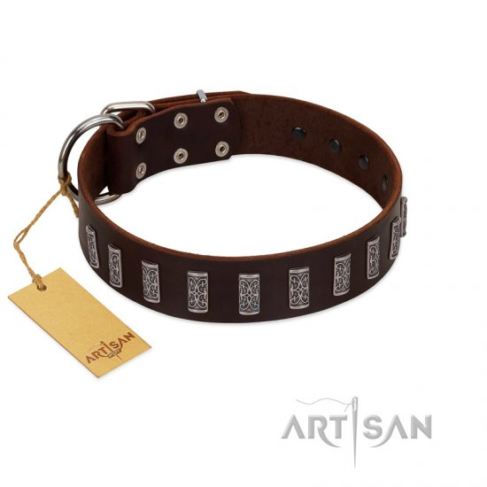 """Brown Lace"" Handmade FDT Artisan Brown Leather English Bulldog Collar for Everyday Walks"