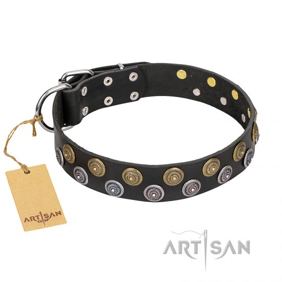 """Romantic Breeze"" FDT Artisan Black Leather English Bulldog Collar with Riveted Circles"