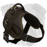 Lightweight Walking and Pulling Nylon Harness for English Bulldog