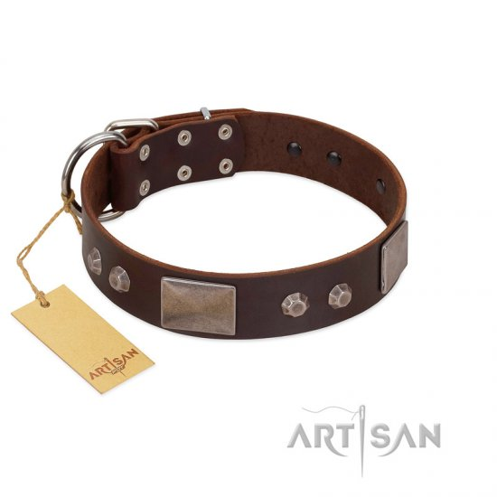 """Stone Stars"" Stylish Handmade FDT Artisan Brown Leather English Bulldog Collar"
