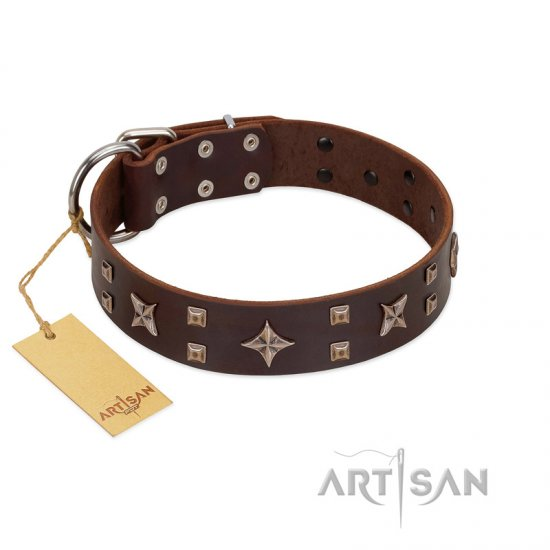 """Stars in Sands"" Modern FDT Artisan Brown Leather English Bulldog Collar with Studs and Stars"