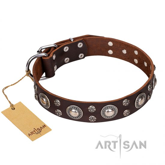 'Age of Beauty' FDT Artisan Incredible Studded Brown Leather English Bulldog Collar
