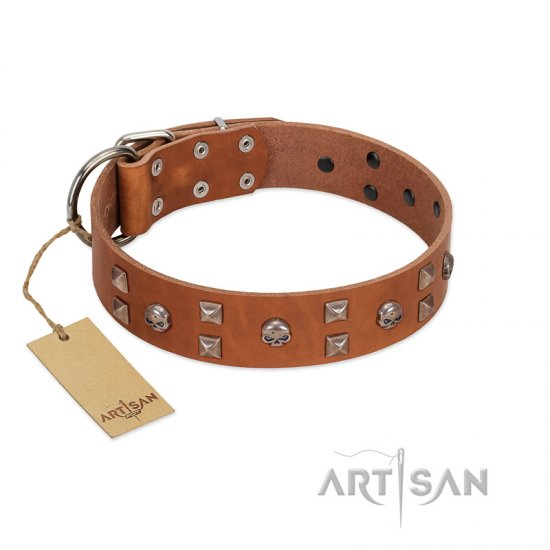 """Enchanted Skulls"" FDT Artisan Tan Leather English Bulldog Collar with Chrome Plated Skulls"