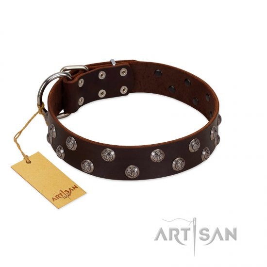 """Blossom Jewel"" FDT Artisan Brown Leather English Bulldog Collar with Two Rows of Silver-like Studs with Engraved Flowers"