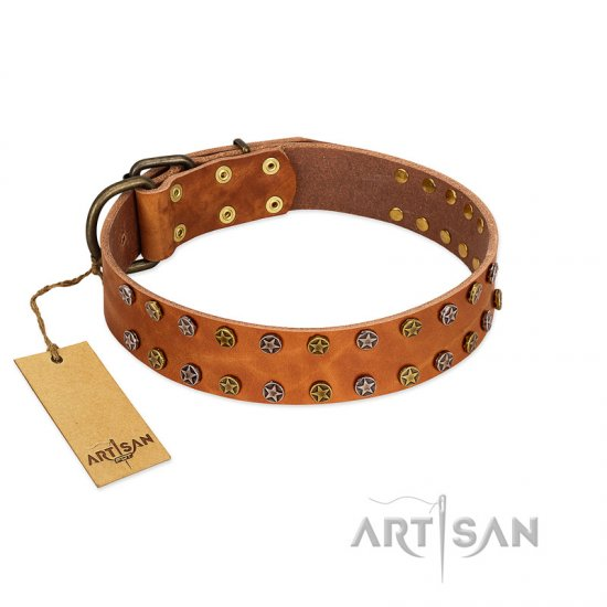 """Walk and Shine"" FDT Artisan Tan Leather English Bulldog Collar with Antiqued Studs"