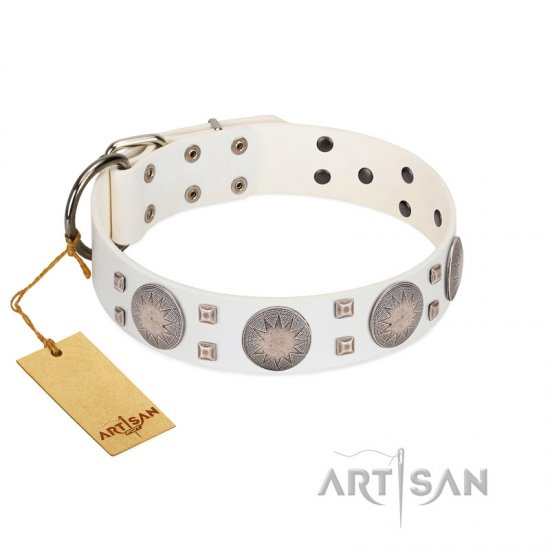 """Mighty Shields"" FDT Artisan White Leather English Bulldog Collar with Chrome Plated Shields and Square Studs"