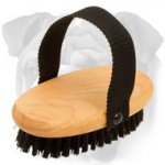 High Quality Grooming Bristle Brush for English Bulldog