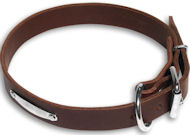 Engl.Bulldog Id collar Brown collar 23'' /23 inch dog collar