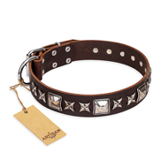 'Perfect Impression' FDT Artisan English Bulldog Brown Leather Dog Collar with Silvery Square Studs - 1 1/2 inch (40 mm) Wide