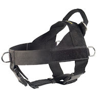 Nylon Harness for Canicross- English Bulldog Harness