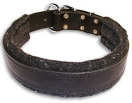 English Bulldog Leather Black collar 21'' /21 inch dog collar