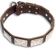 Bulldog GREAT Brown dog collar 19 inch/19'' collar -c83