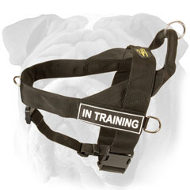 Search&Rescue Nylon Harness for English Bulldog