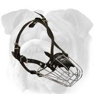 Wire Basket Dog Muzzle for English Bulldog
