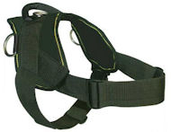 English Bulldog Nylon Dog Harness - H6