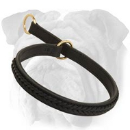 Braided Leather Choke Collar for English Bulldog