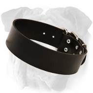 Classic Leather Collar for English Bulldog