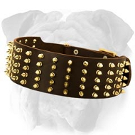 Royal Spiked Leather English Bulldog Collar