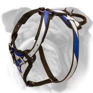 Israeli Flag Painted English Bulldog Harness for Various Activities
