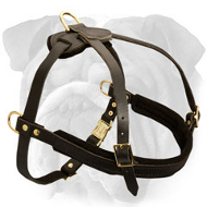 Leather Tracking Harness for English Bulldog with Padded Front Strap