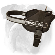 Service Reflective Nylon English Bulldog Harness with ID Patches