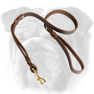 Gorgeous Leather English Bulldog Leash With Extra Handle