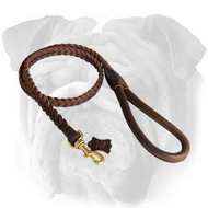 Delightful Braided Leather English Bulldog Leash with Round Handle