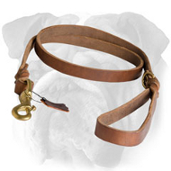 Braided Latigo Leather Leash for English Bulldog
