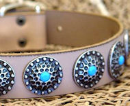 High Quality Dog Collars with blue stones English Bulldog