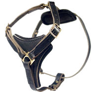 Latigo Adjustable Harness-English Bulldog Leather Harness