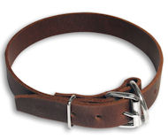 Leather Buckle Dog Collar English Bulldog