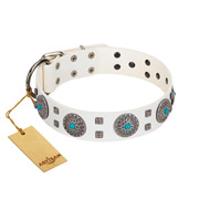 """Blue Sapphire"" Designer FDT Artisan White Leather English Bulldog Collar with Round Plates and Square Studs"