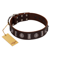 """Spiky Way"" FDT Artisan Brown Leather English Bulldog Collar with Silver-Like Decorations"