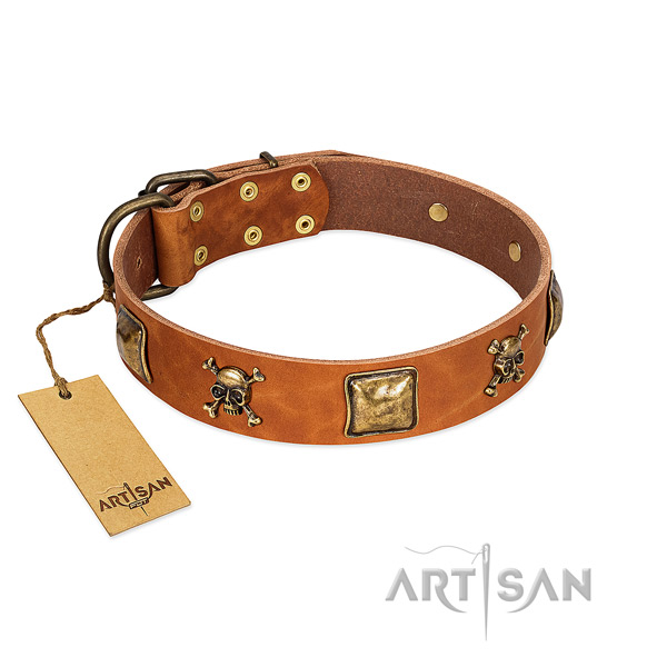 Designer full grain leather dog collar with rust-proof studs