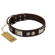 """Baller Status"" FDT Artisan Brown Leather English Bulldog Collar Adorned with a Set of Chrome Plated Studs and Plates"