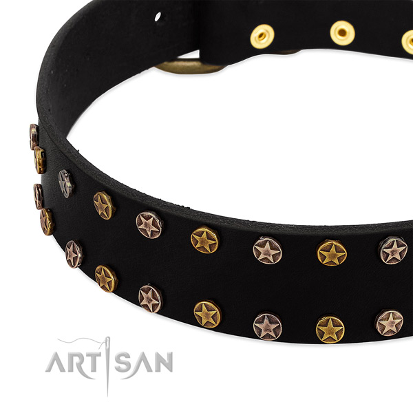 Inimitable studs on genuine leather collar for your canine