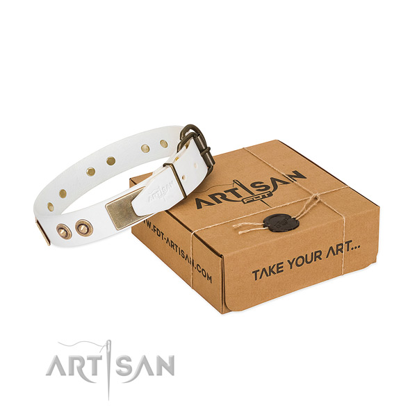 Corrosion proof adornments on natural genuine leather dog collar for your doggie