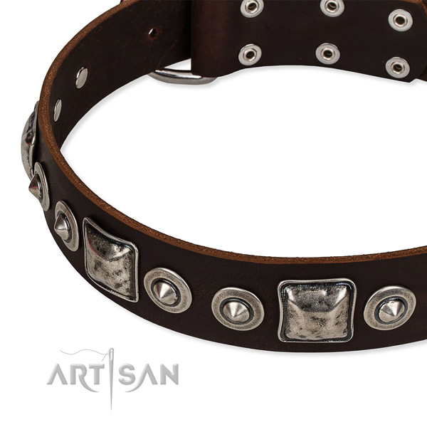 Best quality genuine leather dog collar created for your attractive canine