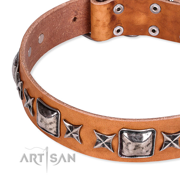 Handy use embellished dog collar of finest quality full grain natural leather