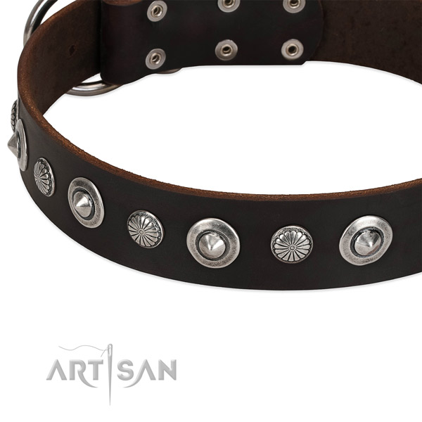 Amazing embellished dog collar of quality natural leather