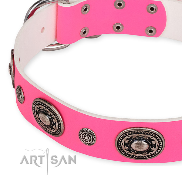 Leather dog collar with inimitable durable decorations