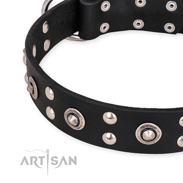 Genuine leather collar with rust-proof traditional buckle for your stylish pet