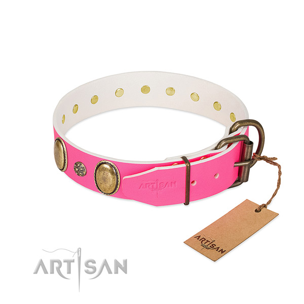 Flexible full grain leather dog collar with adornments